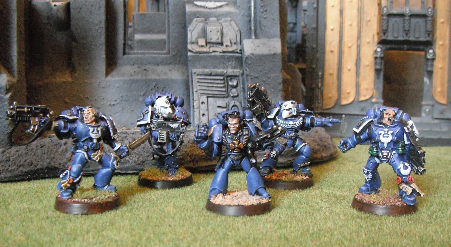sternguard, stern guard, tyranid vertrans, terminator honour space marine