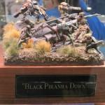 Black Piranha down