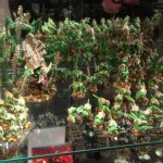 Today's picture: Green Tyranids