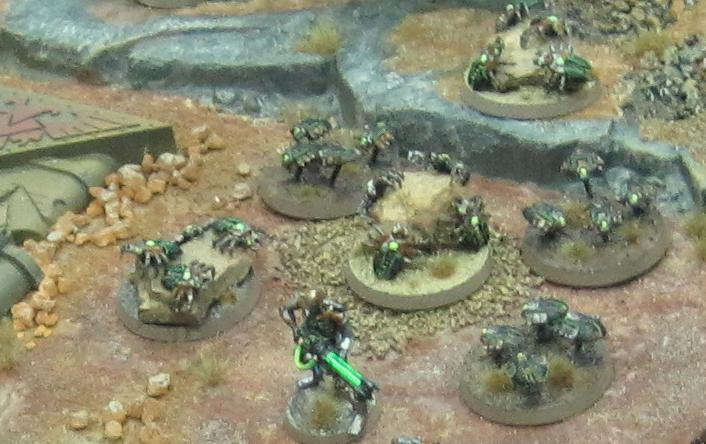 scarab bases