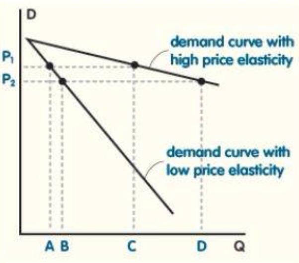 price elasticity essay